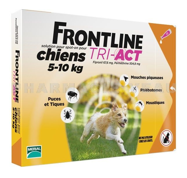 frontline tri act chiens s 5 10 kg 6 pipettes. Black Bedroom Furniture Sets. Home Design Ideas