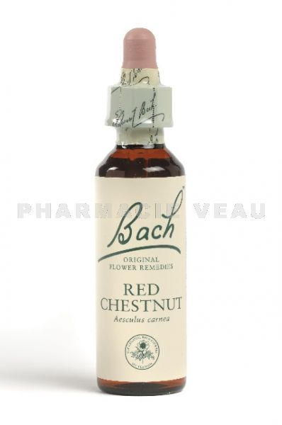 Fleur de Bach Marronnier rouge / Red Chestnut  - Flacon compte-gouttes 20 ml